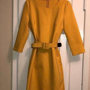 Tailored straight Dress with Belt